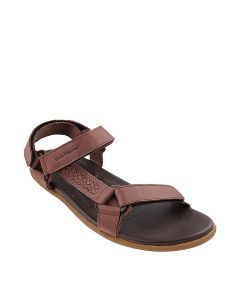 Curros III Rafter In Brown